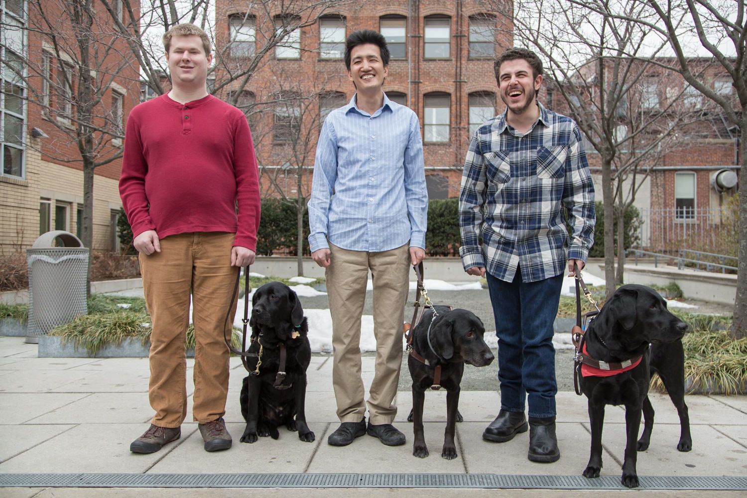 3 seeing eye dogs
