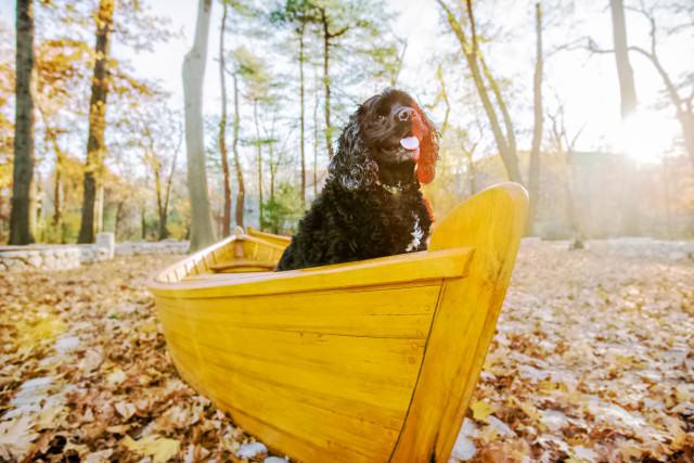 Duncan in boat in Watertown.