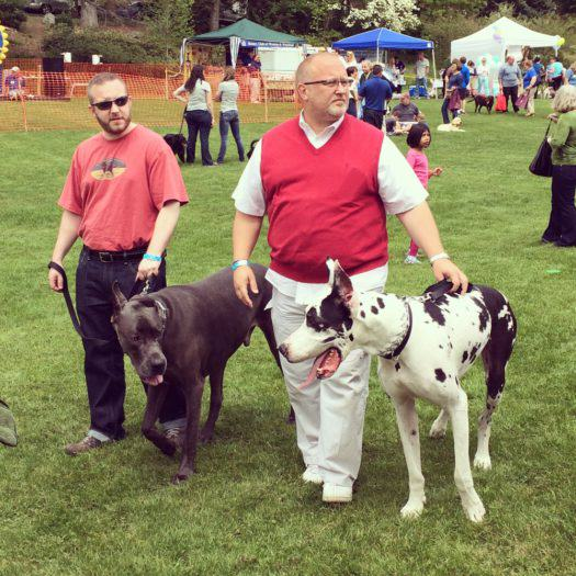 WestonPoochParade-Fred-Levy-Photography - 2